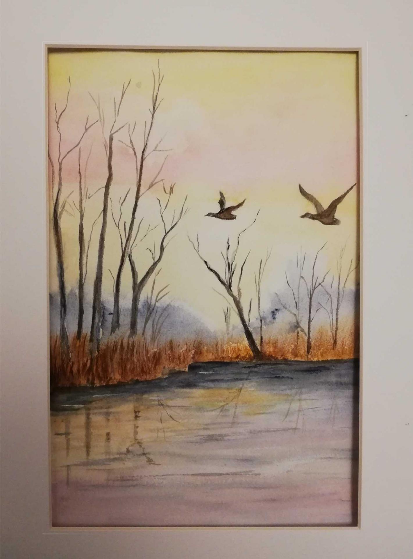 Vol dans les marais